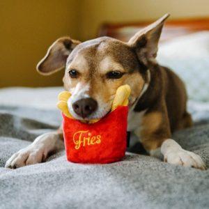 Plyšové hračky pro psy v podobě potravin