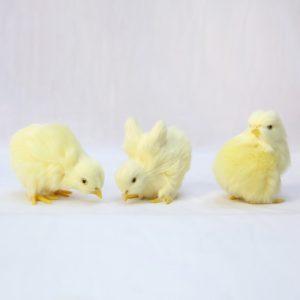 Dekorační mini velikonoční kuřátka