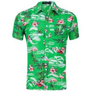 Pánská letní košile s krátkým rukávem v havajském stylu