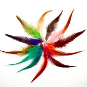 100 ks bažantího dekorativního peří
